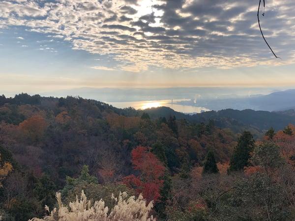 写真 2018-11-25 8 16 20