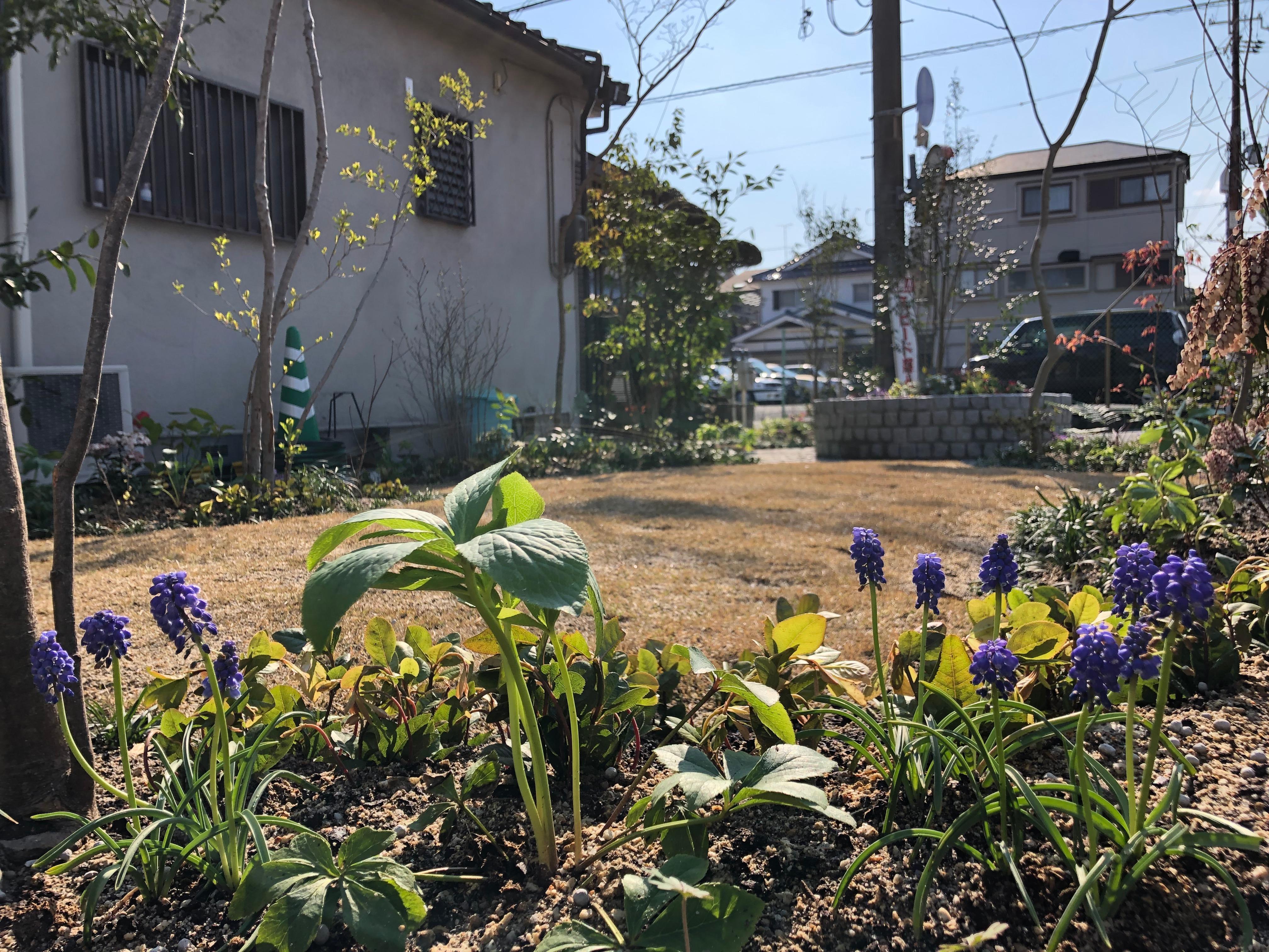 写真 2019-04-04 15 28 35
