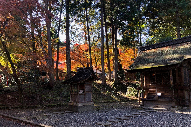 日吉大社 紅葉 空間 四季の庭づくり