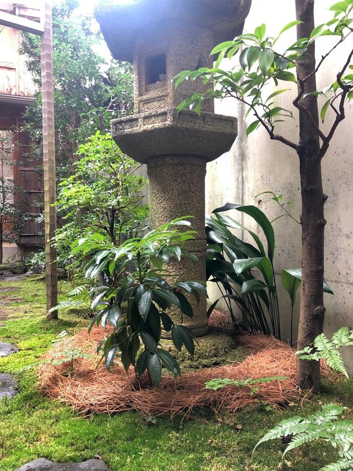 茶庭 露地 敷き松葉 灯籠