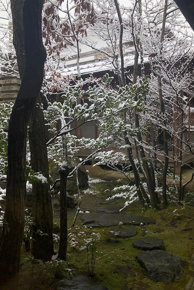 近江庭園 冠雪 庭