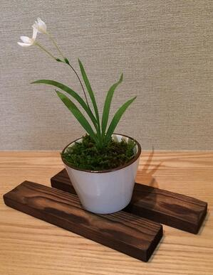 f:id:GardenPorter:20150707163424j:plain