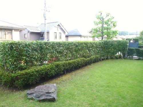 f:id:GardenPorter:20150805143558j:plain