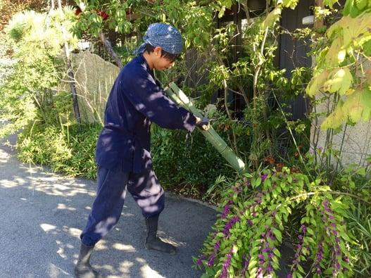 f:id:GardenPorter:20150920085539j:plain