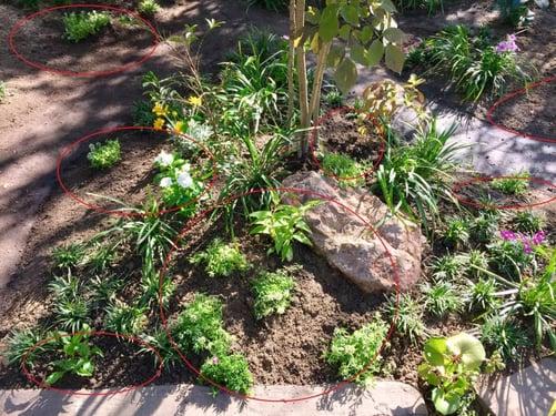 f:id:GardenPorter:20151005095006j:plain