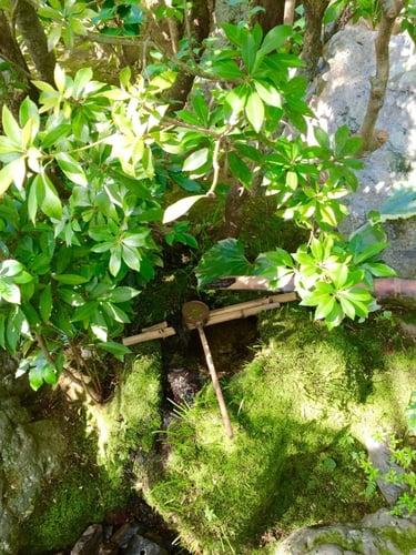 f:id:GardenPorter:20151007125756j:plain