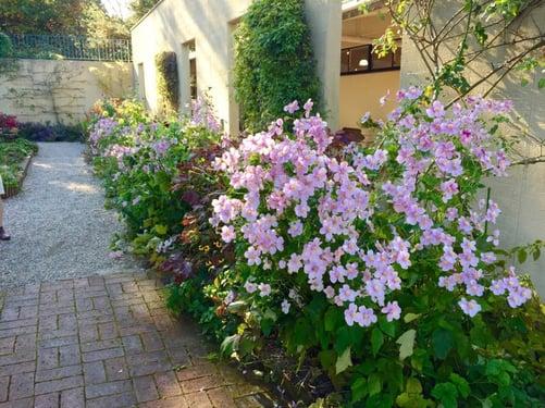 f:id:GardenPorter:20151028083619j:plain