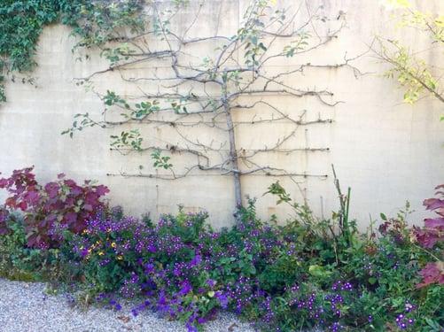f:id:GardenPorter:20151028083709j:plain