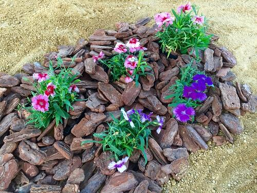 f:id:GardenPorter:20151106143815j:plain