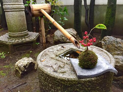 f:id:GardenPorter:20151109175830j:plain