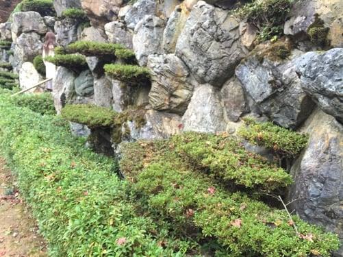 f:id:GardenPorter:20151130103739j:plain