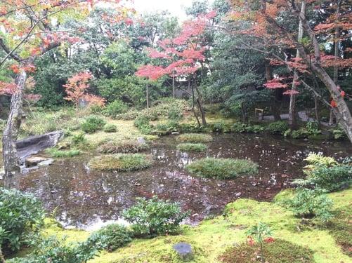 f:id:GardenPorter:20151202143855j:plain