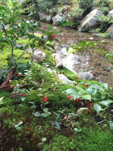 f:id:GardenPorter:20151202145441j:plain