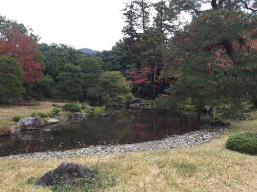 f:id:GardenPorter:20151203091701j:plain