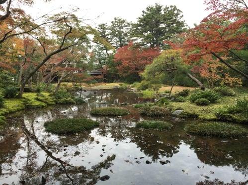 f:id:GardenPorter:20151203094521j:plain