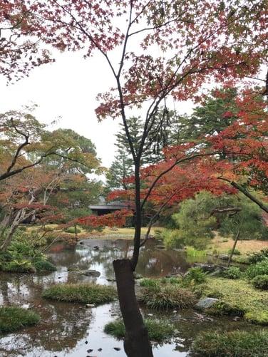 f:id:GardenPorter:20151203095521j:plain