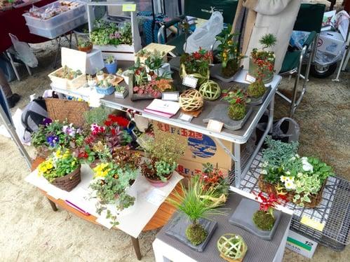 f:id:GardenPorter:20151216145258j:plain