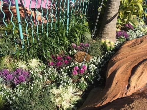 f:id:GardenPorter:20160129132806j:plain