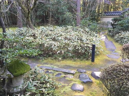 f:id:GardenPorter:20160303104258j:plain