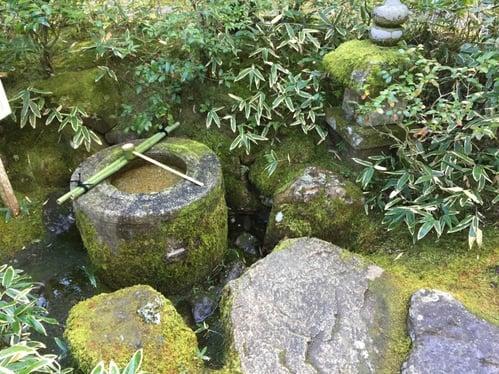 f:id:GardenPorter:20160303105529j:plain