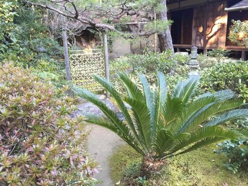 f:id:GardenPorter:20160303110022j:plain