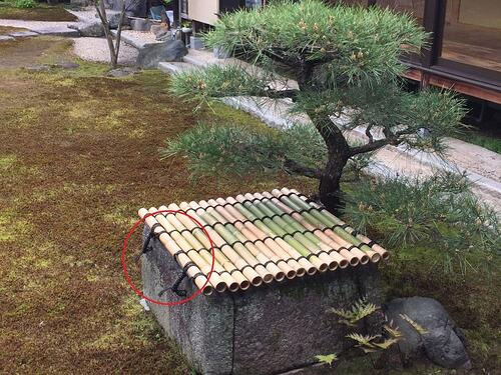 f:id:GardenPorter:20160411134359j:plain