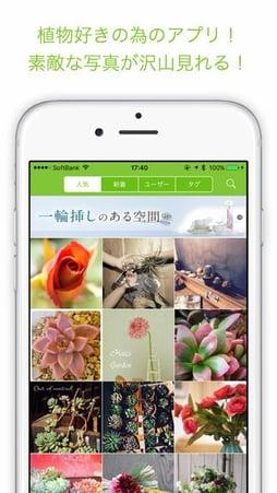 f:id:GardenPorter:20160624165552j:plain