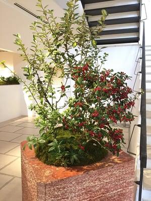 f:id:GardenPorter:20161223170238j:plain