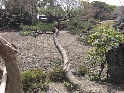 f:id:GardenPorter:20170330174039j:plain