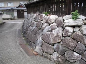 nabaka_201010142.jpg
