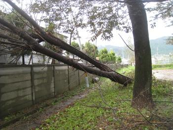taifu18_20091008.jpg
