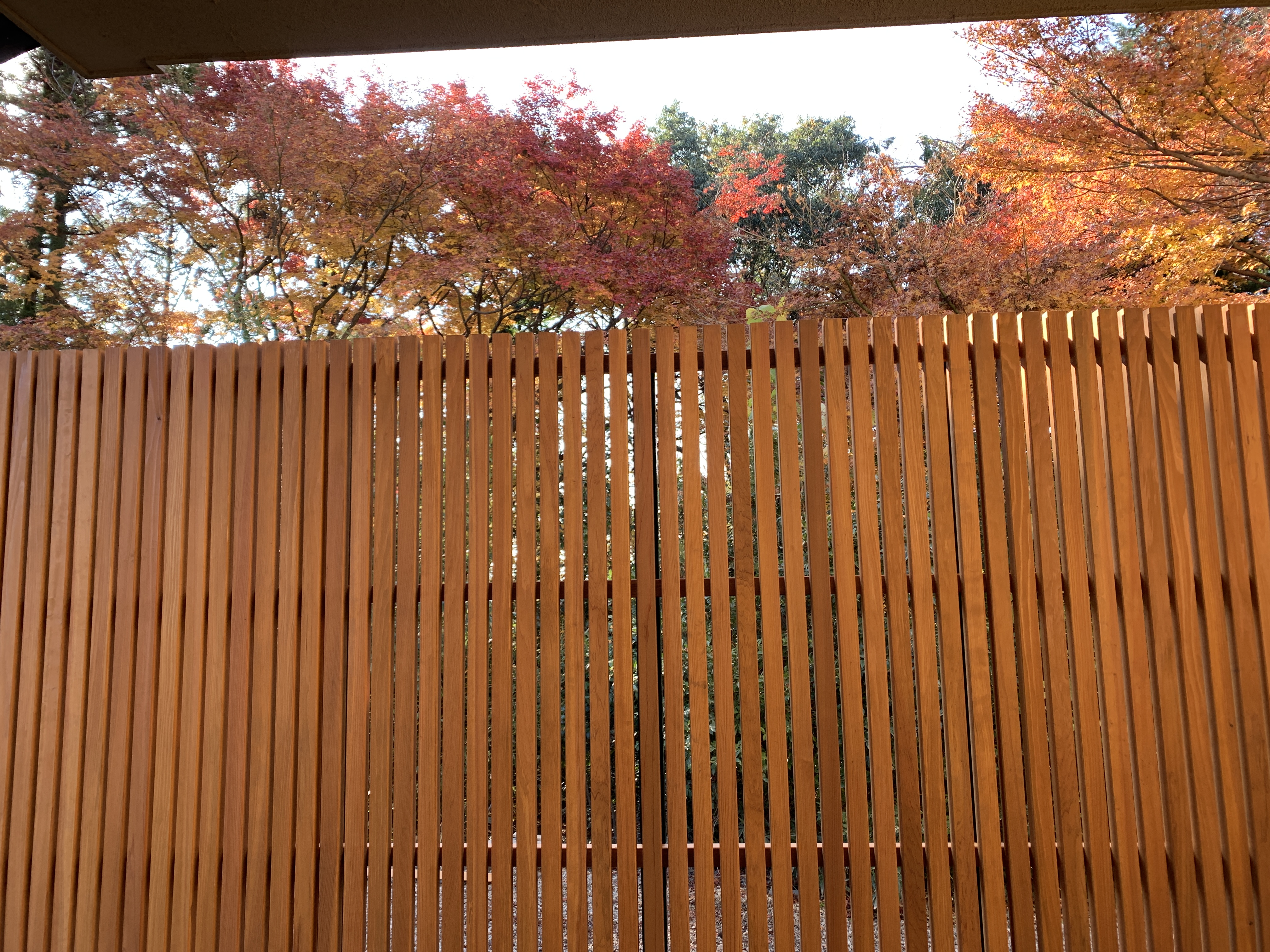 木塀 借景