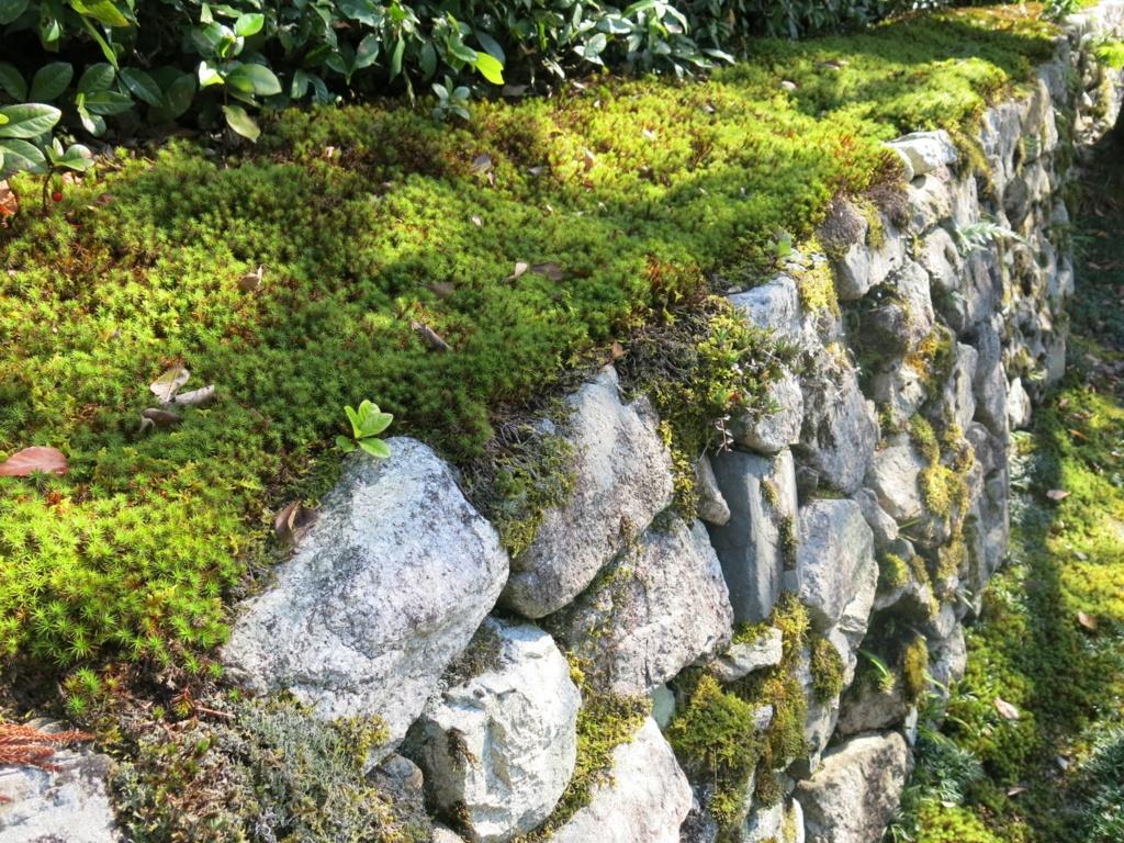 f:id:GardenPorter:20151104143008j:plain