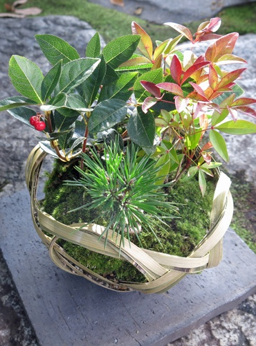 f:id:GardenPorter:20151202181411j:plain