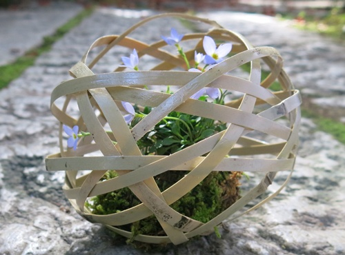 f:id:GardenPorter:20151204150833j:plain