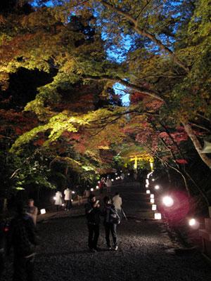 hiyoshitaisha_20081123.jpg
