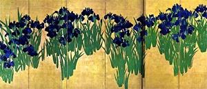 ogata_kakitsubata_20080513.jpg
